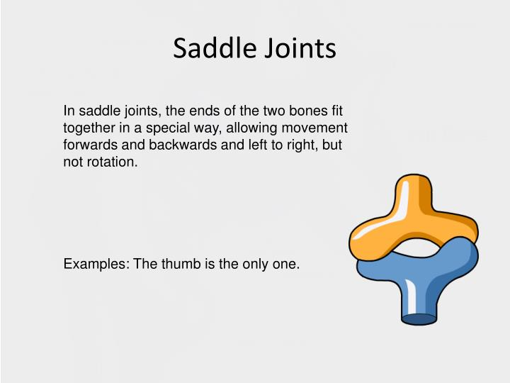 Ppt Unit 1 Types Of Joints Powerpoint Presentation Id2436374