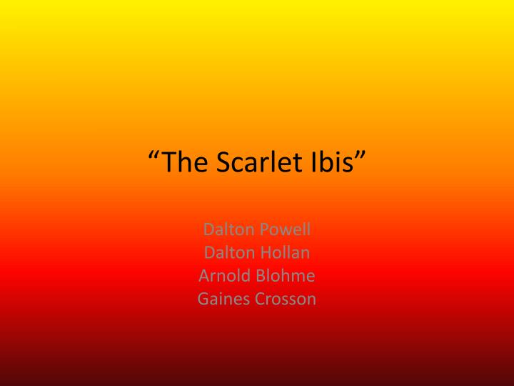 scarlet ibis theme analysis The scarlet ibis by james hurst - lesson plans have student activities for theme, symbolism, plot diagram, vocabulary, twist, & the scarlet ibis summary 2019 the.