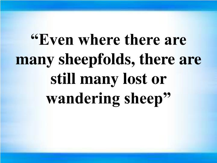 """""""Even where there are many sheepfolds, there are still many lost or wandering sheep"""""""