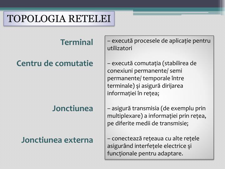 TOPOLOGIA RETELEI