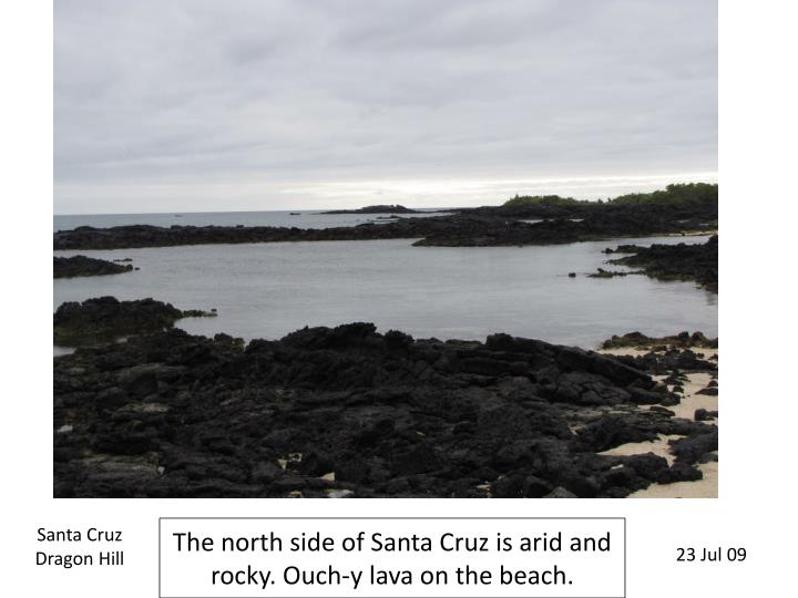 The north side of santa cruz is arid and rocky ouch y lava on the beach