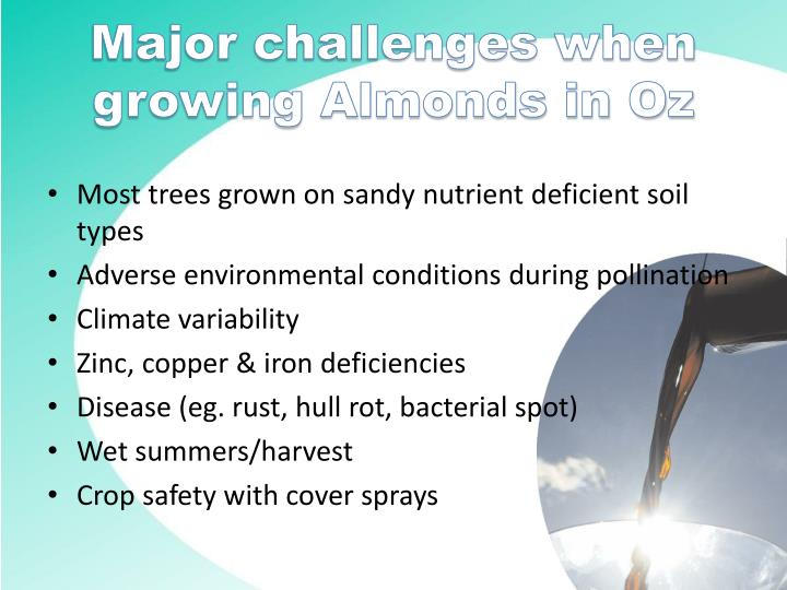 Major challenges when growing almonds in oz