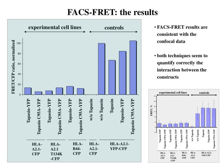 FACS-FRET: the results