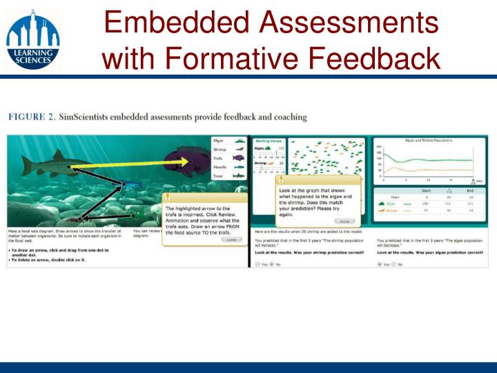 Embedded Assessments with Formative Feedback