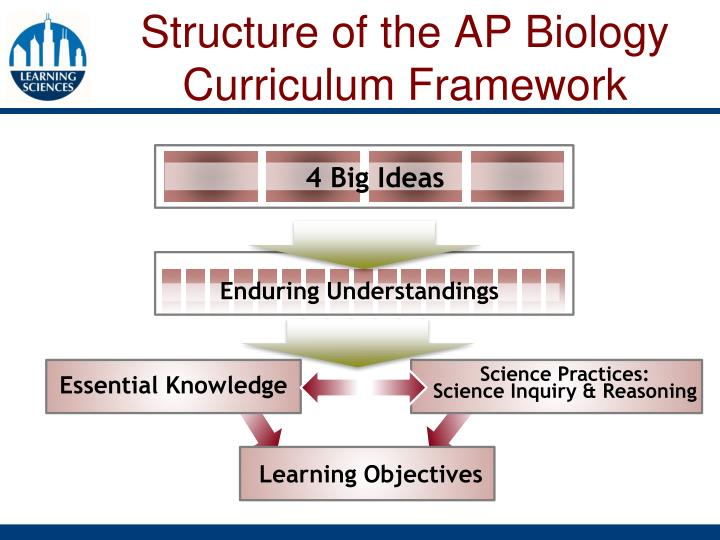 Structure of the AP Biology Curriculum Framework