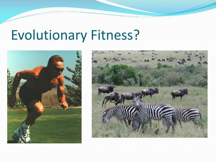 Evolutionary Fitness?
