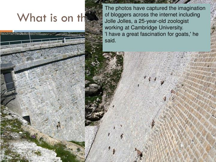 what is on the dam n.