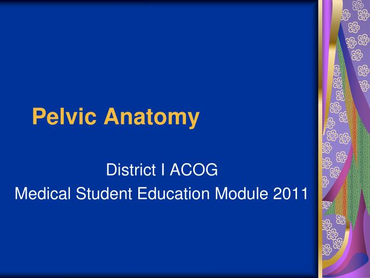 PPT - Pelvic Anatomy PowerPoint Presentation - ID:2440146