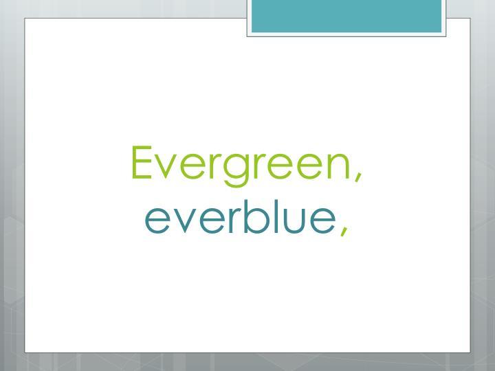 Evergreen,