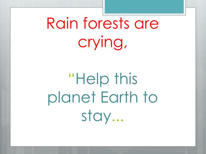 Rain forests are crying,