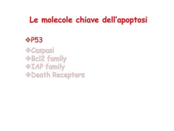 Le molecole chiave dell'apoptosi