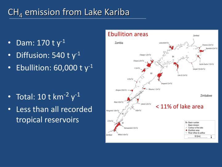 Ebullition areas