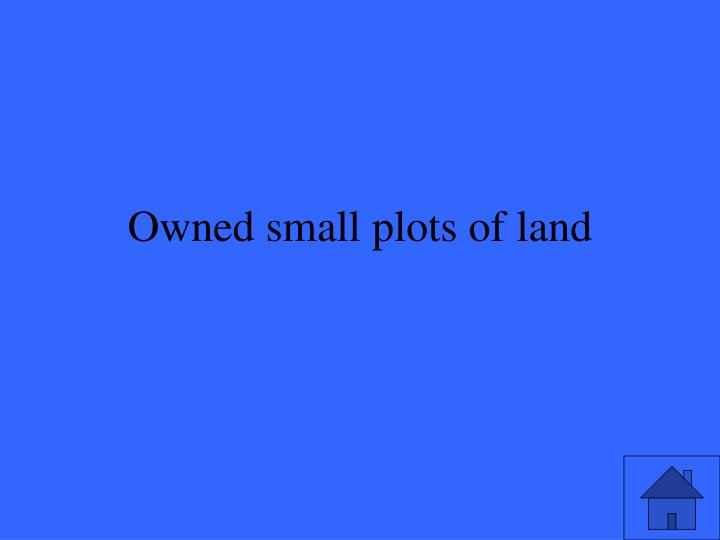 Owned small plots of land