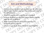 aim and methodology