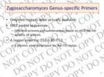 zygosaccharomyces genus specific primers