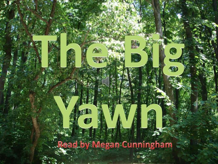 The big yawn1