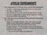 african environments2