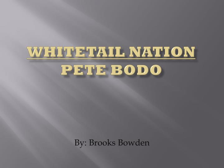 whitetail nation pete bodo n.