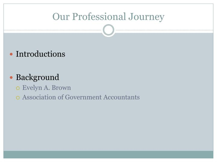 Our professional journey1