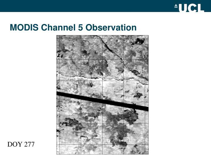 MODIS Channel 5 Observation