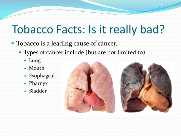 Tobacco facts is it really bad