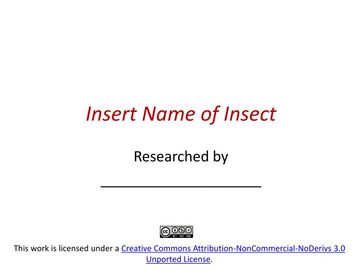 insert name of insect n.