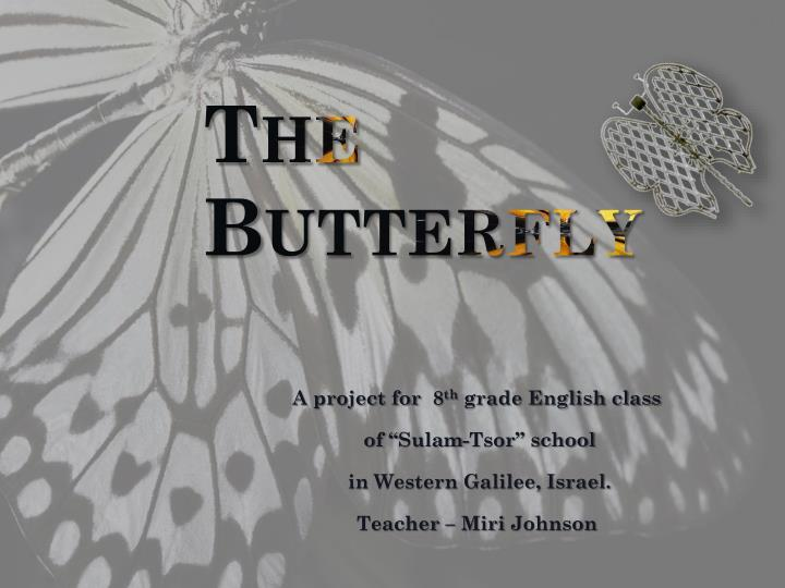 the butterfly n.