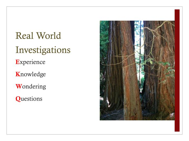 Real World Investigations