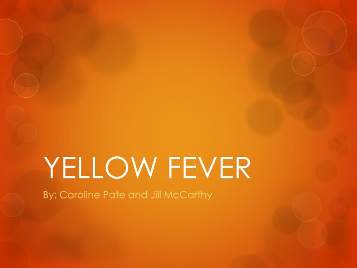 yellow fever n.
