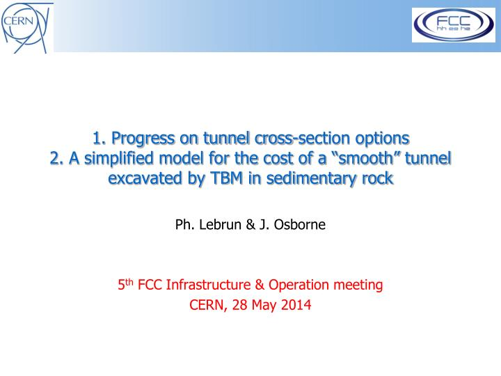 1. Progress on tunnel cross-section options