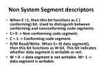 non system segment descriptors3