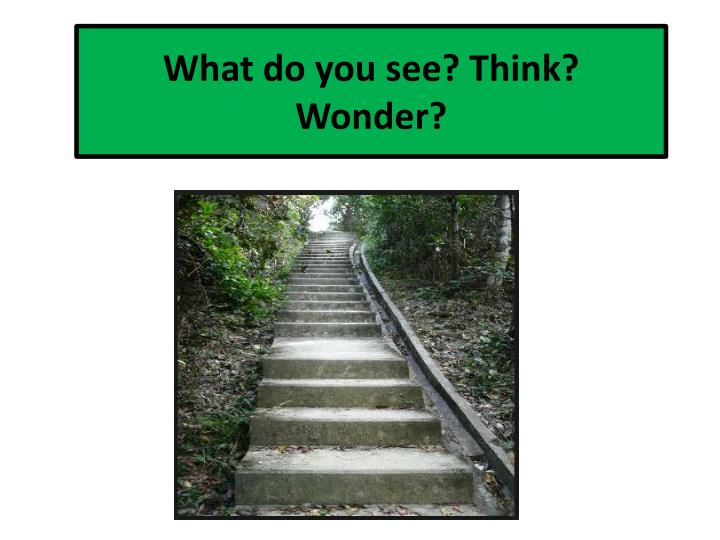what do you see think wonder n.
