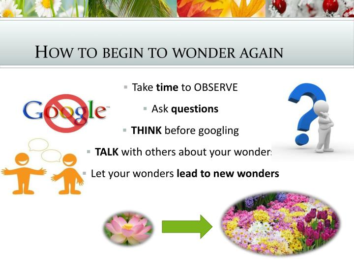 How to begin to wonder again