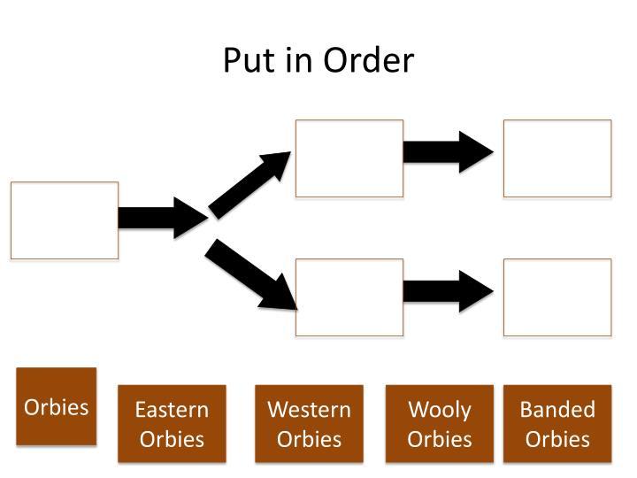 Put in Order