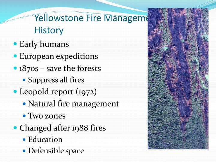 Yellowstone Fire Management History