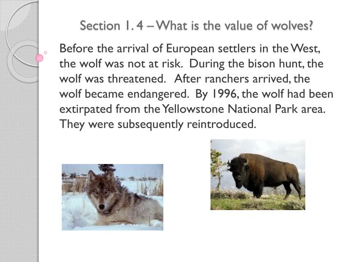 section 1 4 what is the value of wolves n.