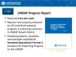 undaf progress report