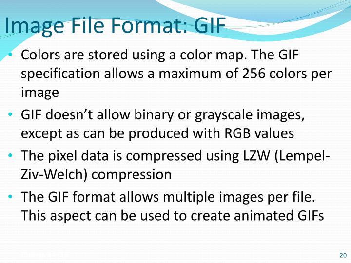Image File Format: GIF