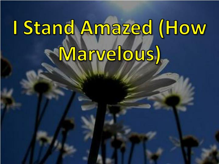i stand amazed how marvelous n.