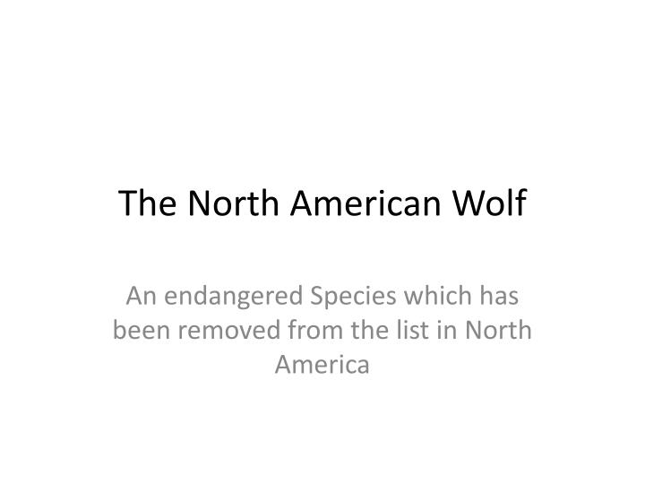 the north american wolf n.
