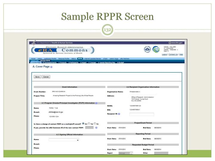 Sample RPPR Screen