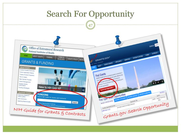Search For Opportunity