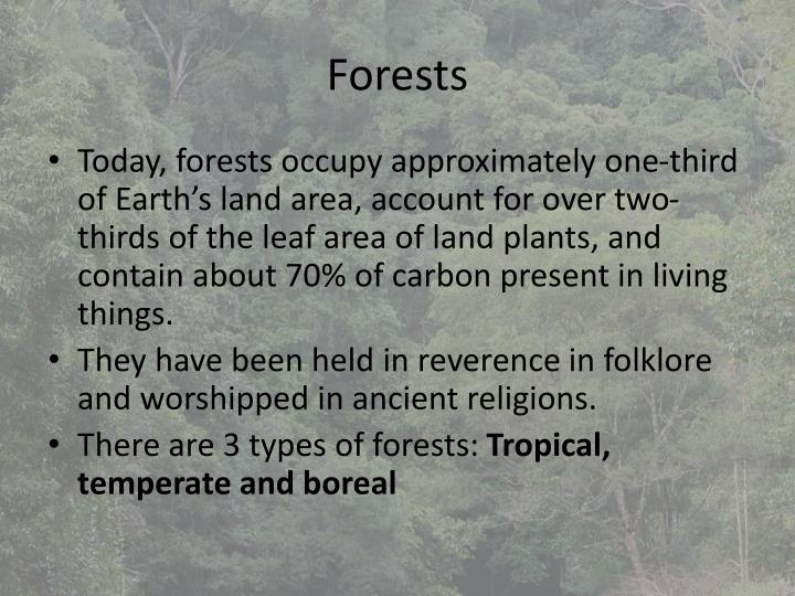 forests n.