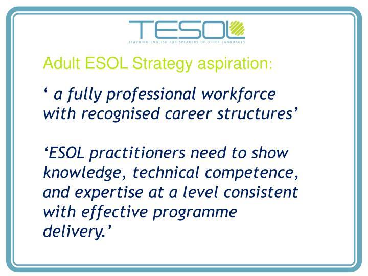 Adult ESOL Strategy aspiration