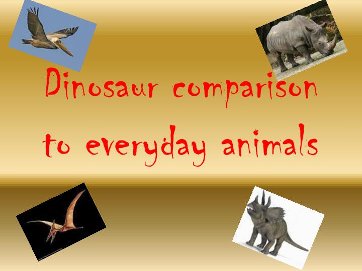 dinosaur comparison to everyday animals n.
