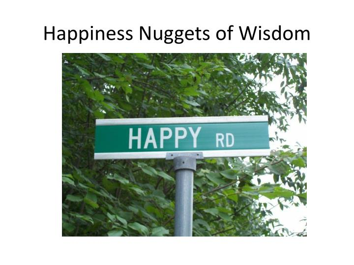 happiness nuggets of wisdom n.