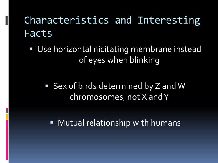 Characteristics and Interesting Facts