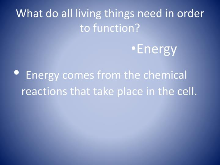 What do all living things need in order to function?