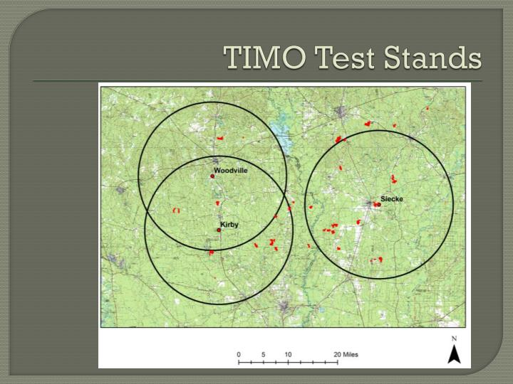 TIMO Test Stands