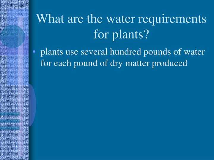 What are the water requirements for plants?